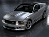 SMS 25th Anniversary Mustang