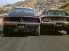Stang vs. Dodge
